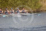 The Women's Boat Race and Henley Boat Races 2014: The Intercollegiate women's race. The Wadham College (Oxford) boat in the lead.. River Thames, Henley-on-Thames, Buckinghamshire, United Kingdom, on 30 March 2014 at 13:27, image #34