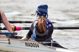 The Women's Boat Race and Henley Boat Races 2014: The Intercollegiate Women 's Race, in the Wadham College boat cox Harriet-Rose Noons.. River Thames, Henley-on-Thames, Buckinghamshire, United Kingdom, on 30 March 2014 at 13:39, image #71
