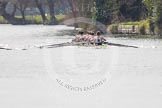 The Women's Boat Race and Henley Boat Races 2014: The Intercollegiate men's race. Oriel College (Oxford) and Downing College (Cambridge, on the left) getting close.. River Thames, Henley-on-Thames, Buckinghamshire, United Kingdom, on 30 March 2014 at 13:51, image #79