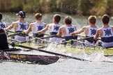 The Women's Boat Race and Henley Boat Races 2014: The Intercollegiate men's race. Oriel College (Oxford) and Downing College (Cambridge, on the left) are still close together.. River Thames, Henley-on-Thames, Buckinghamshire, United Kingdom, on 30 March 2014 at 13:51, image #88