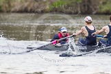 The Women's Boat Race and Henley Boat Races 2014: The Lightweight Men's Boat Race - OULRC vs CULRC. In the Oxford boat cox Hannah Keenan, stroke Matt Kerin, 7 Andrew Saul.. River Thames, Henley-on-Thames, Buckinghamshire, United Kingdom, on 30 March 2014 at 15:40, image #378