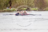 The Women's Boat Race and Henley Boat Races 2014: The Lightweight Men's Boat Race - OULRC vs CULRC. Oxford boat is reducing the distance to the leading Cambridge boat.. River Thames, Henley-on-Thames, Buckinghamshire, United Kingdom, on 30 March 2014 at 15:41, image #399