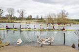 The Boat Race season 2015: OUWBC training Wallingford: Rowers passing Fleming Boathouse on the Upper Thames at Wallingford.  Wallingford,  United Kingdom, on 04 March 2015 at 13:23, image #2