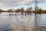 The Boat Race season 2015: OUWBC training Wallingford.  Wallingford,  United Kingdom, on 04 March 2015 at 16:40, image #221