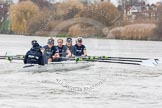 "The Boat Race season 2016 - Women's Boat Race Trial Eights (OUWBC, Oxford): ""Scylla"" at the Surrey Bend, cox-Antonia Stutter, stroke-Emma Lukasiewicz, 7-Lauren Kedar, 6-Joanne Jansen, 5-Anastasia Chitty, 4-Rebecca Te Water Naude, 3-Elettra Ardissino, 2-Merel Lefferts, bow-Issy Dodds. River Thames between Putney Bridge and Mortlake, London SW15,  United Kingdom, on 10 December 2015 at 12:27, image #226"
