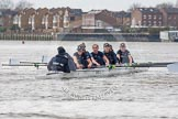 "The Boat Race season 2016 - Women's Boat Race Trial Eights (OUWBC, Oxford): ""Scylla"" at the Surrey Bend, cox-Antonia Stutter, stroke-Emma Lukasiewicz, 7-Lauren Kedar, 6-Joanne Jansen, 5-Anastasia Chitty, 4-Rebecca Te Water Naude, 3-Elettra Ardissino, 2-Merel Lefferts, bow-Issy Dodds. River Thames between Putney Bridge and Mortlake, London SW15,  United Kingdom, on 10 December 2015 at 12:27, image #227"