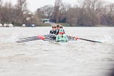 The Boat Race season 2016 - Women's Boat Race Fixture CUWBC vs OBUBC. River Thames between Putney Bridge and Mortlake, London SW15,  United Kingdom, on 31 January 2016 at 15:59, image #54