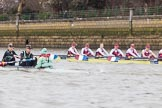 The Boat Race season 2016 - Women's Boat Race Fixture CUWBC vs OBUBC. River Thames between Putney Bridge and Mortlake, London SW15,  United Kingdom, on 31 January 2016 at 16:00, image #56