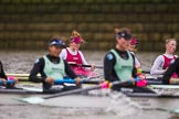 The Boat Race season 2016 - Women's Boat Race Fixture CUWBC vs OBUBC. River Thames between Putney Bridge and Mortlake, London SW15,  United Kingdom, on 31 January 2016 at 16:01, image #69