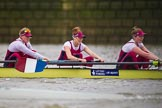 The Boat Race season 2016 - Women's Boat Race Fixture CUWBC vs OBUBC. River Thames between Putney Bridge and Mortlake, London SW15,  United Kingdom, on 31 January 2016 at 16:02, image #77