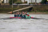 The Boat Race season 2016 - Women's Boat Race Fixture CUWBC vs OBUBC. River Thames between Putney Bridge and Mortlake, London SW15,  United Kingdom, on 31 January 2016 at 16:10, image #105