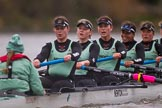 The Boat Race season 2016 - Women's Boat Race Fixture CUWBC vs OBUBC. River Thames between Putney Bridge and Mortlake, London SW15,  United Kingdom, on 31 January 2016 at 16:21, image #131