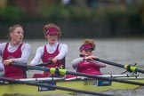 The Boat Race season 2016 - Women's Boat Race Fixture CUWBC vs OBUBC. River Thames between Putney Bridge and Mortlake, London SW15,  United Kingdom, on 31 January 2016 at 16:26, image #151