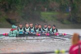 The Boat Race season 2016 - Women's Boat Race Fixture CUWBC vs OBUBC. River Thames between Putney Bridge and Mortlake, London SW15,  United Kingdom, on 31 January 2016 at 16:29, image #165