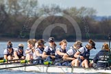 The Boat Race season 2016 -  The Cancer Research Women's Boat Race. River Thames between Putney Bridge and Mortlake, London SW15,  United Kingdom, on 27 March 2016 at 14:04, image #141