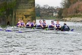 The Boat Race season 2017 - Women's Boat Race Fixture CUWBC vs Univerity of London: The UL eigth at Barnes Bridge, bow - Emily Wilks, 2 - Catherine Ador, 3 - Fionnuala Gannon, 4 - Sara Parfett, 5 - Charlotte Hodgkins-Byrne, 6 - Georgia Stratham, 7 - Ally French, stroke - Robyn Hart-Winks, cox - Lauren Holland. River Thames between Putney Bridge and Mortlake, London SW15,  United Kingdom, on 19 February 2017 at 16:24, image #129
