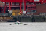 The Boat Race season 2018 - Women's Boat Race Trial Eights (CUWBC, Cambridge): Expecto Patronum near the Western Riverside Waste Authority. River Thames between Putney Bridge and Mortlake, London SW15,  United Kingdom, on 05 December 2017 at 12:25, image #30