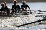 The Women's Boat Race season 2018 - fixture CUWBC vs. ULBC: OUWBC and ULBC during the early phase of the second race. River Thames between Putney Bridge and Mortlake, London SW15,  United Kingdom, on 17 February 2018 at 13:30, image #129