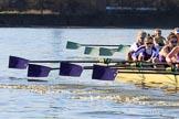 "The Women's Boat Race season 2018 - fixture CUWBC vs. ULBC: CUWBC extending the lead over ULBC, in a ""lots of oars"" shot. River Thames between Putney Bridge and Mortlake, London SW15,  United Kingdom, on 17 February 2018 at 13:32, image #149"