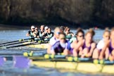 The Women's Boat Race season 2018 - fixture CUWBC vs. ULBC: ULBC and CUWBC - here, in the Cambridge  boat, bow Olivia Coffey, 2 Myriam Goudet-Boukhatmi, 3 Alice White, 4 Paula Wesselmann, 5 Thea Zabell, 6 Anne Beenken, 7 Imogen Grant, stroke Tricia Smith, cox Sophie Shapter. River Thames between Putney Bridge and Mortlake, London SW15,  United Kingdom, on 17 February 2018 at 13:35, image #168