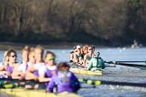 The Women's Boat Race season 2018 - fixture CUWBC vs. ULBC: ULBC and CUWBC - here, in the Cambridge  boat, just having crossed the finish line, bow Olivia Coffey, 2 Myriam Goudet-Boukhatmi, 3 Alice White, 4 Paula Wesselmann, 5 Thea Zabell, 6 Anne Beenken, 7 Imogen Grant, stroke Tricia Smith, cox Sophie Shapter. River Thames between Putney Bridge and Mortlake, London SW15,  United Kingdom, on 17 February 2018 at 13:35, image #169