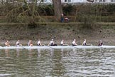 The Women's Boat Race season 2018 - fixture OUWBC vs. Molesey BC: Molesey's second boat, on the way back to Putney after racing Osiris, the 2nd OUWBC boat: bow Sophie Heywood, 2 Pippa Birch, 3 Xanthe Weatherhead, 4 Amber Hickson, 5 Charlotte Gill, 6 Marie Grant, 7 Iona Riley, stroke Kristi Stone, cox Charlotte Fuscone. There are quite a few more photos of the crew, please let me know if intersted.. River Thames between Putney Bridge and Mortlake, London SW15,  United Kingdom, on 04 March 2018 at 13:53, image #88