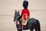 Trooping the Colour 2009: The Adjutant of the Parade, Captain J R H L Bullock-Webster, Irish Guards.. Horse Guards Parade, Westminster, London SW1,  United Kingdom, on 13 June 2009 at 10:34, image #66