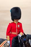 Trooping the Colour 2009: The Adjutant of the Parade, Captain J R H L Bullock-Webster, Irish Guards.. Horse Guards Parade, Westminster, London SW1,  United Kingdom, on 13 June 2009 at 10:39, image #73