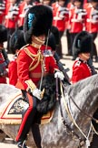 Trooping the Colour 2009: The Field Officer, Lieutenant Colonel Ben Farrell, Irish Guards, riding 'Wellesley'.. Horse Guards Parade, Westminster, London SW1,  United Kingdom, on 13 June 2009 at 11:35, image #206