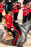 Trooping the Colour 2009: The Field Officer, Lieutenant Colonel Ben Farrell, Irish Guards, riding 'Wellesley'.. Horse Guards Parade, Westminster, London SW1,  United Kingdom, on 13 June 2009 at 11:37, image #211