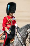 Trooping the Colour 2009: The Field Officer, Lieutenant Colonel Ben Farrell, Irish Guards, riding 'Wellesley'.. Horse Guards Parade, Westminster, London SW1,  United Kingdom, on 13 June 2009 at 11:41, image #214