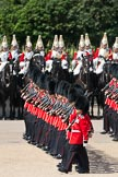 Trooping the Colour 2009: The March Past - No. 6 Guard, F Company Scots Guards, marching in front of The Life Guards.. Horse Guards Parade, Westminster, London SW1,  United Kingdom, on 13 June 2009 at 11:44, image #216