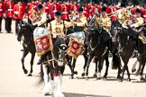 Trooping the Colour 2009: The Ride Past of the Mounted Bands of the Household Cavalry, one of the two kettle drummers in front.. Horse Guards Parade, Westminster, London SW1,  United Kingdom, on 13 June 2009 at 11:54, image #230
