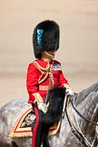Trooping the Colour 2009: The Field Officer, Lieutenant Colonel Ben Farrell, has got permission from HM The Queen to march off.. Horse Guards Parade, Westminster, London SW1,  United Kingdom, on 13 June 2009 at 12:09, image #252