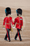 Trooping the Colour 2009: Lieutnant (left) and Major (right) of the Irish Guards, further information appreciated!. Image #12, 13 June 2009 09:43 Horse Guards Parade, London, UK