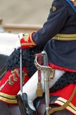 "Trooping the Colour 2010: Colonel T W Browne, The Blues and Royals, Silver Stick in Waiting. The photo only frames saddle, Silver Stick, sword, and uniform, and a staggering amount of detail, when watched at full resolution!  Horse Guards Parade is beautifully reflected in the rear shield of his uniform (please correct me if ""rear shield"" is the wrong phrase!).. Horse Guards Parade, Westminster, London SW1, Greater London, United Kingdom, on 12 June 2010 at 11:09, image #101"