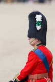 """Trooping the Colour 2010: His Royal Highness (HRH) Charles, Prince of Wales,  the eldest child of Queen Elizabeth II and Prince Philip, Duke of Edinburgh, heir apparent to the throne.  As Colonel of the Welsh Guards, the Prince of Wales is taking part in """"Trooping the Colour"""" 2010. As a Royal Colonel, his place at the parade is close to Her Majesty within the Royal Procession.  In this photo, he is observing the parade on horseback, positioned, by protocol, left to the dais of the Queen.. Horse Guards Parade, Westminster, London SW1, Greater London, United Kingdom, on 12 June 2010 at 11:44, image #153"""