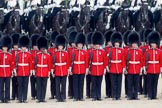 Trooping the Colour 2010: HJoergens41_100612_G6C7509.CR2. Horse Guards Parade, Westminster, London SW1, Greater London, United Kingdom, on 12 June 2010 at 11:51, image #159