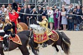 Trooping the Colour 2010: HJoergens41_100612_G6C7540.CR2. Horse Guards Parade, Westminster, London SW1, Greater London, United Kingdom, on 12 June 2010 at 11:53, image #162