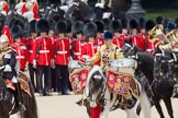 Trooping the Colour 2010: HJoergens41_100612_G6C7562.CR2. Horse Guards Parade, Westminster, London SW1, Greater London, United Kingdom, on 12 June 2010 at 11:54, image #165