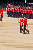 The Colonel's Review 2011: The Subaltern of No. 5 Guard, 1st Battalion Welsh Guards, and the Ensign of No. 4 Guard (Nijmegen Company Grenadier Guards).. Horse Guards Parade, Westminster, London SW1,  United Kingdom, on 04 June 2011 at 10:29, image #34