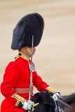 The Colonel's Review 2011: Close-up of the Field Officer, Lieutenant Colonel Lincoln P M Jopp, Scots Guards.. Horse Guards Parade, Westminster, London SW1,  United Kingdom, on 04 June 2011 at 11:33, image #160