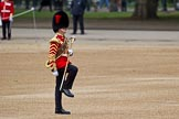 The Major General's Review 2011: Close-up of Drum Major Tony Taylor, No. 7 Company Coldstream Guards.. Horse Guards Parade, Westminster, London SW1, Greater London, United Kingdom, on 28 May 2011 at 10:19, image #28