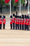 The Major General's Review 2011: No. 6 Guard, No. 7 Company Coldstream Guards.. Horse Guards Parade, Westminster, London SW1, Greater London, United Kingdom, on 28 May 2011 at 10:36, image #64