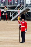 The Major General's Review 2011: Colour Sergeant Chris Millin, Scots Guards, holding the already uncased Colour.. Horse Guards Parade, Westminster, London SW1, Greater London, United Kingdom, on 28 May 2011 at 10:37, image #66