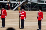 The Major General's Review 2011: The Colour Party. Colour Sergeant Chris Millin, holding the already uncased Colour, flanked by the two sentries.. Horse Guards Parade, Westminster, London SW1, Greater London, United Kingdom, on 28 May 2011 at 10:40, image #74