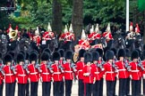 The Major General's Review 2011: The Mounted Bands of the Household Cavalry getting into position at the border of St. James's Park. In front No. 4 Guard, Nijmegen Company Grenadier Guards.. Horse Guards Parade, Westminster, London SW1, Greater London, United Kingdom, on 28 May 2011 at 10:57, image #97