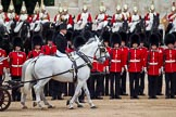 The Major General's Review 2011: The Inspection of the Line. The two Windsor Grey horses pulling a carriage instead of the ivory mounted phaeton, and head coachman Jack Hargreaves.. Horse Guards Parade, Westminster, London SW1, Greater London, United Kingdom, on 28 May 2011 at 11:02, image #117