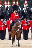 The Major General's Review 2011: The Field Officer in Brigade Waiting, Lieutenant Colonel L P M Jopp, riding 'Burniston'.. Horse Guards Parade, Westminster, London SW1, Greater London, United Kingdom, on 28 May 2011 at 11:28, image #182