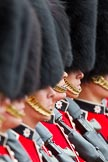 The Major General's Review 2011: Close-up of a row of guardsmen from the Coldstream Guards.. Horse Guards Parade, Westminster, London SW1, Greater London, United Kingdom, on 28 May 2011 at 11:38, image #209